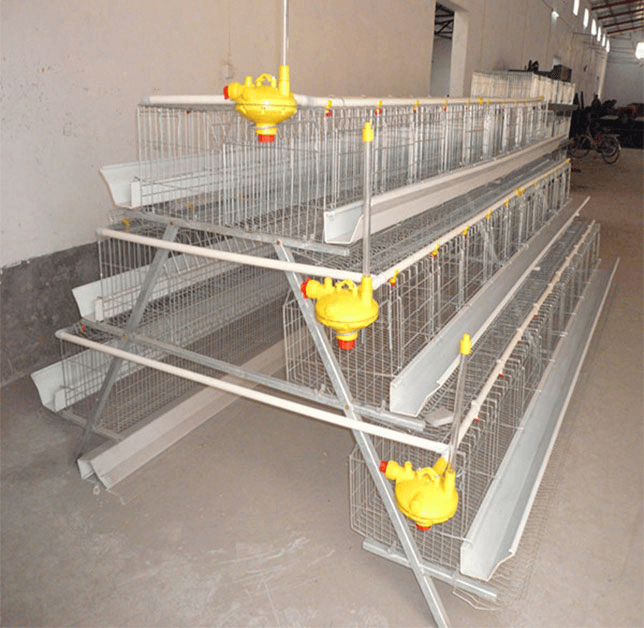3 layer chicken cage