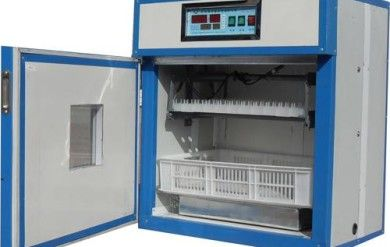 Chicken Egg Incubator for Poultry