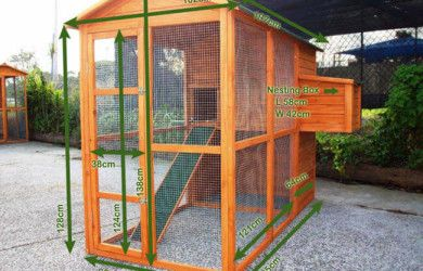 Chicken Coop Size