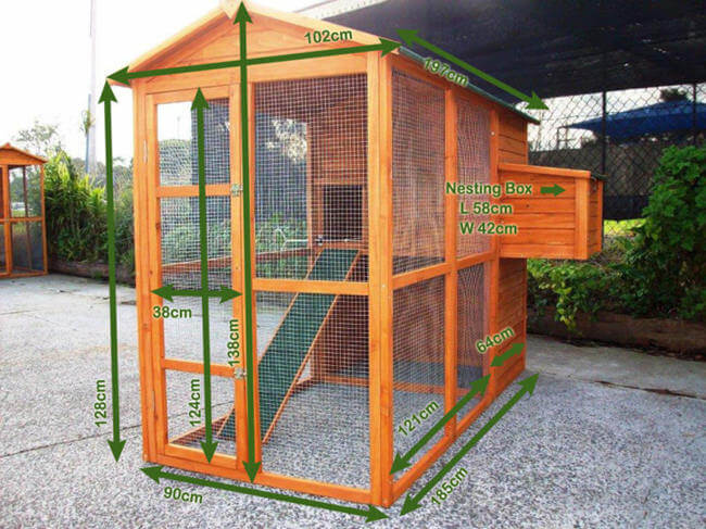 Choose The Best Chicken Coop for Backyard Poultry