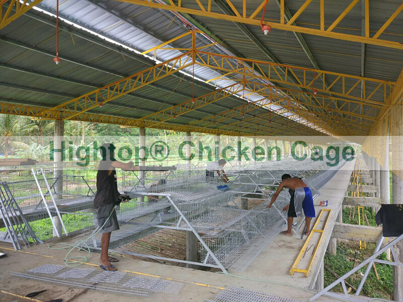 battery cage in Philippines