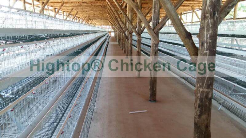 chicken farm project in Uganda
