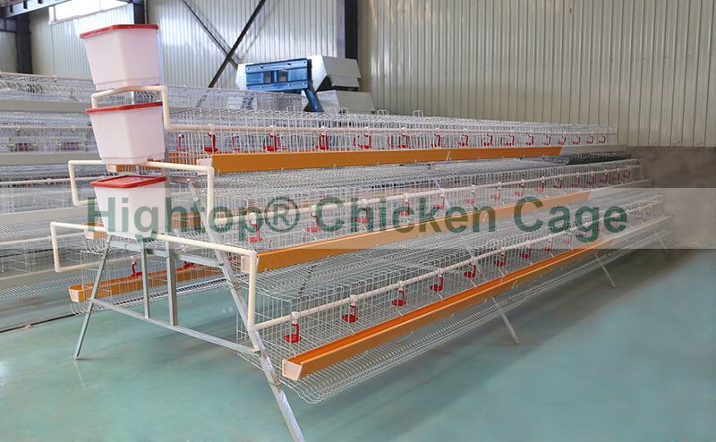 chicken layer cage for egg laying chickens