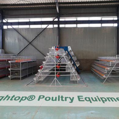 hen cage manufacturer